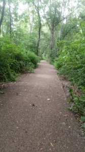 Bike Hike Trail